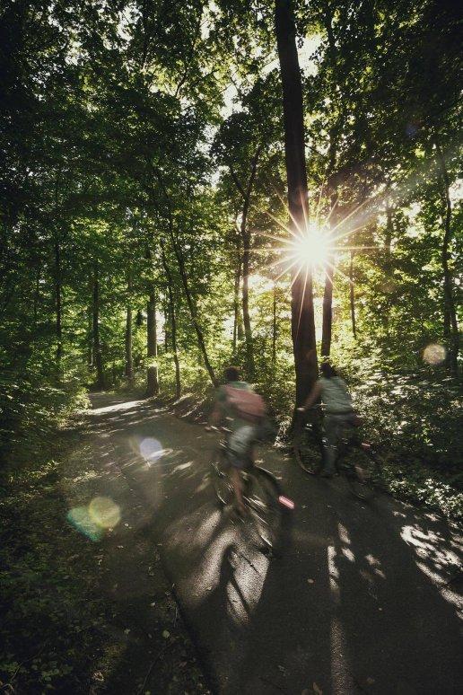 Eilenriede in Hannover - Europas größter Stadtwald