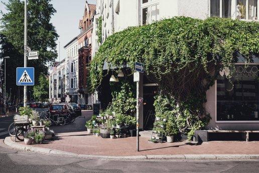 Indigo Blumenladen in der Stephanusstraße