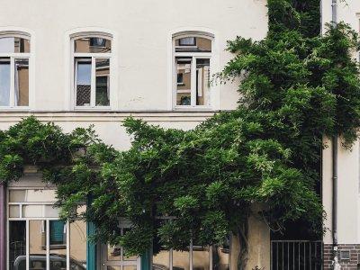Rehbockstraße