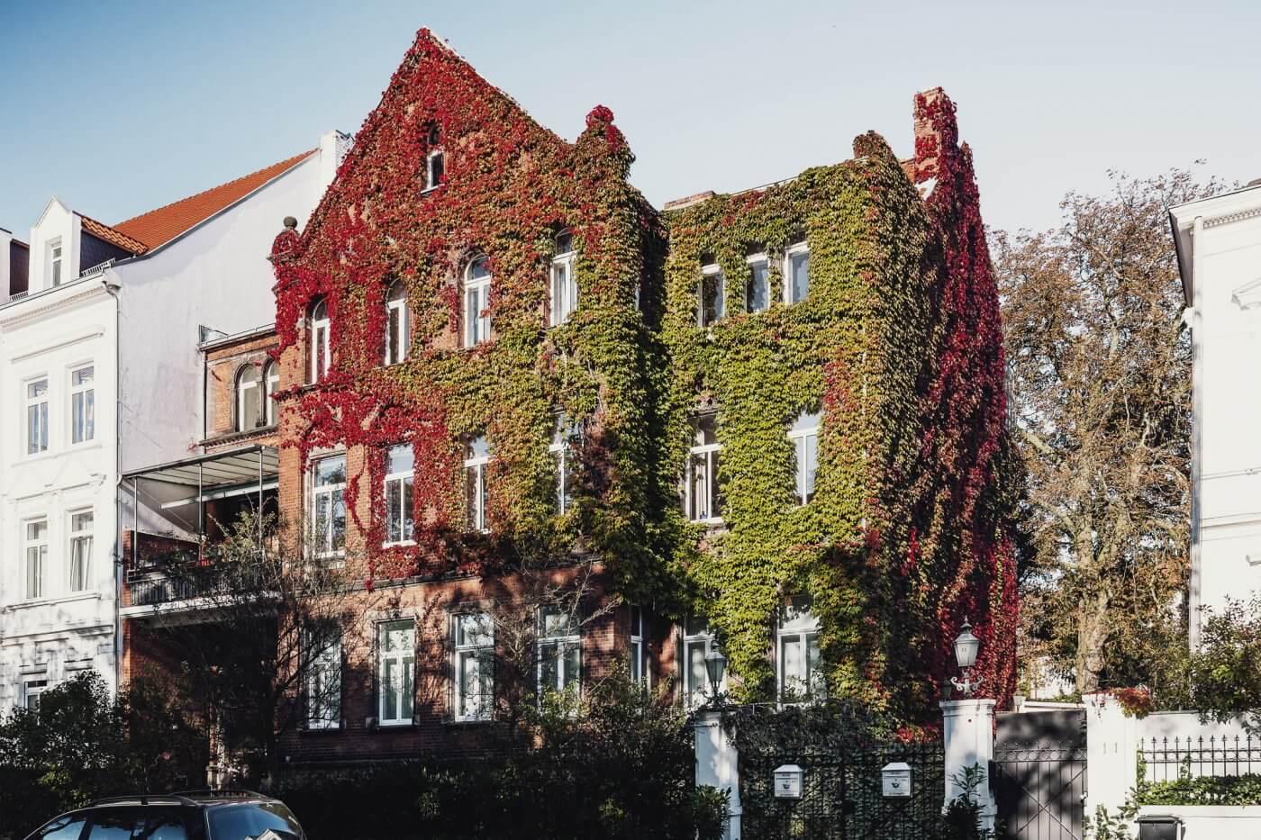 Nienburger Straße in der Nordstadt von Hannover