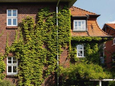 Werrastraße