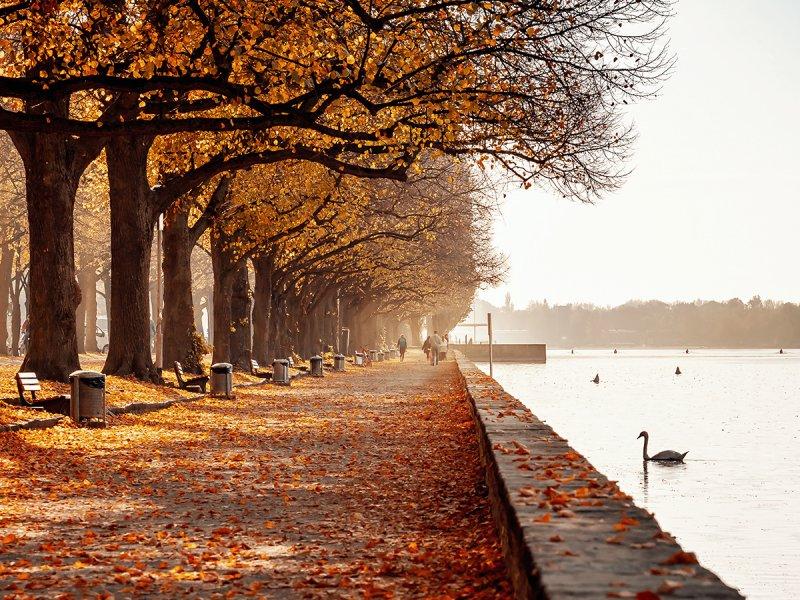 Herbst am Maschsee in Hannover - Rudolf-von-Bennigsen-Ufer