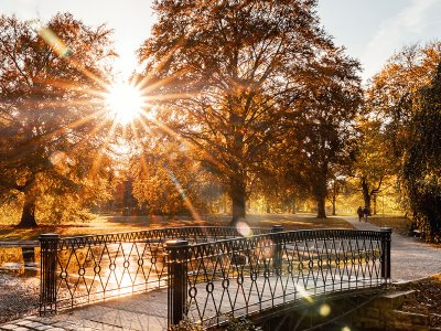 Welfengarten im Herbst