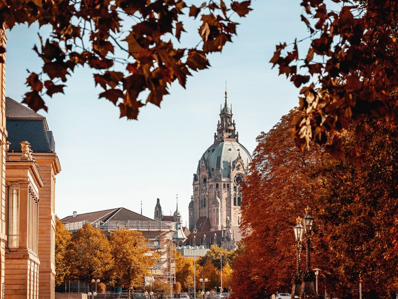 Herbstlicher Blick aufs Neue Rathaus, gesehen vom Hohen Ufer in der Altstadt