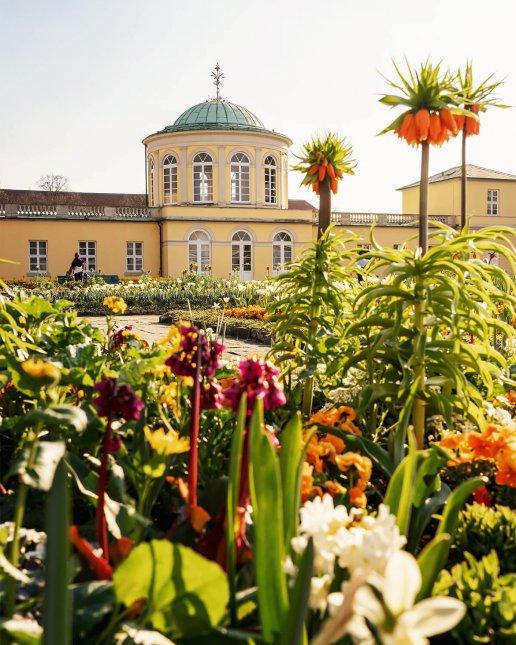 Frühling im Berggarten in Hannover