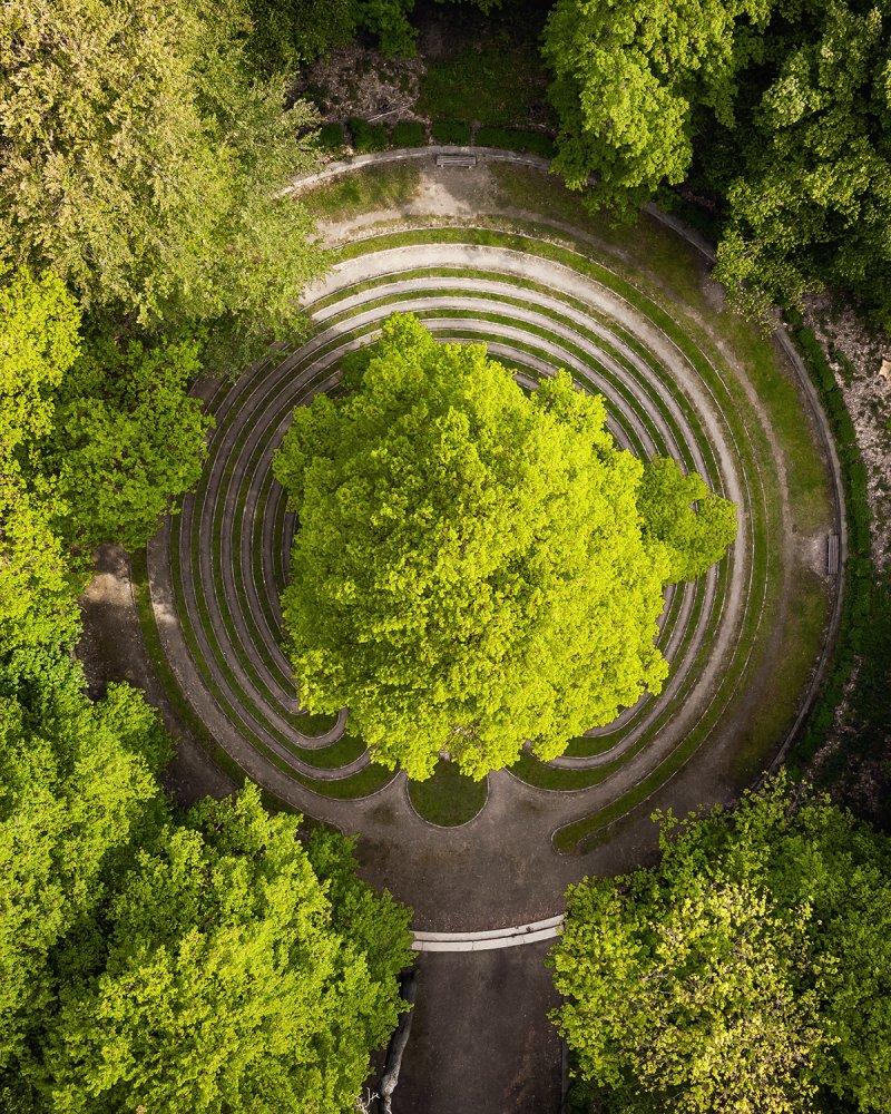 Rasenlabyrinth Das Rad in der Eilenriede in Hannover