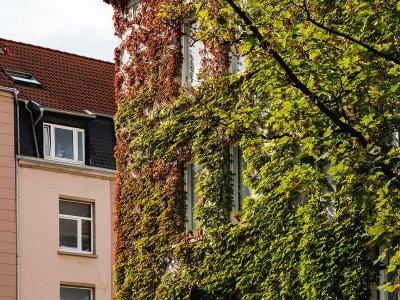 Bennostraße