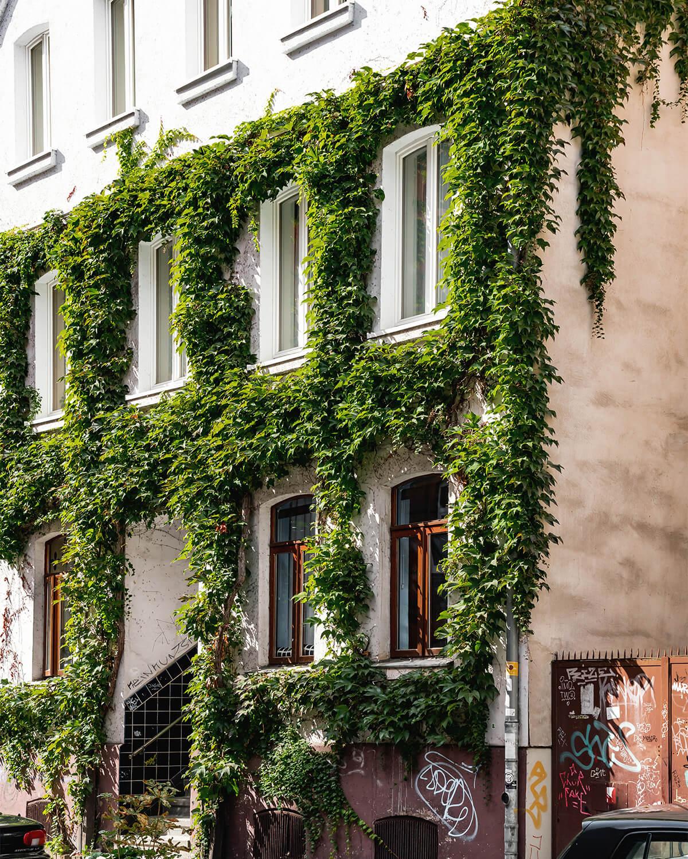 Albertstraße