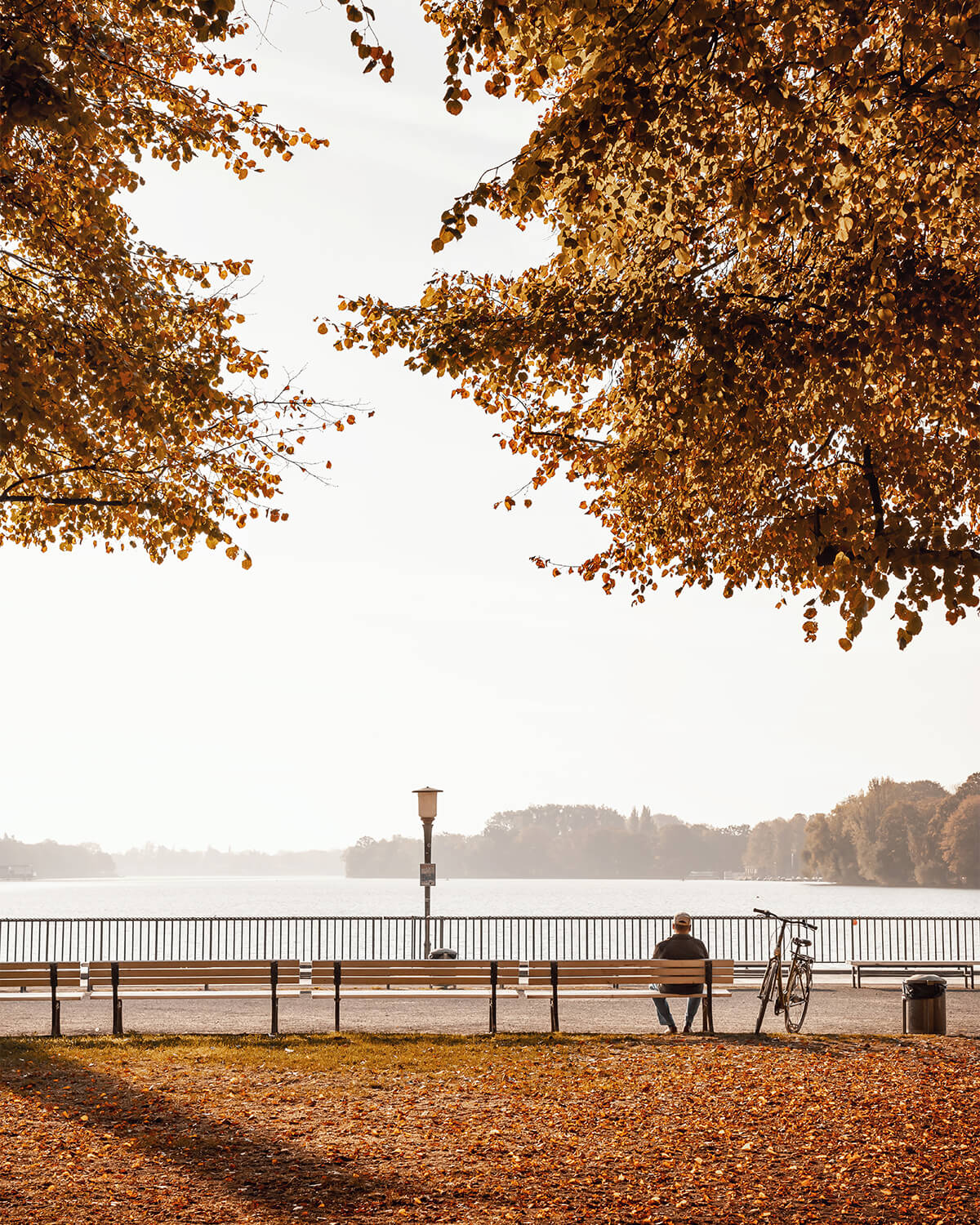 Herbst am Maschsee in Hannover