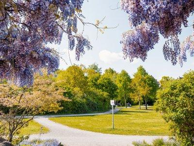Vahrenwalder Park