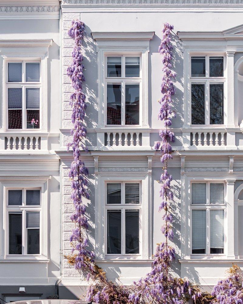 Uhlemeyerstraße