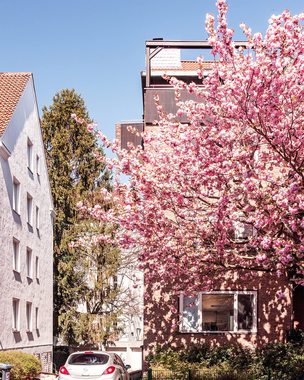 Haarstraße
